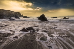 Picture from Pexels.com
