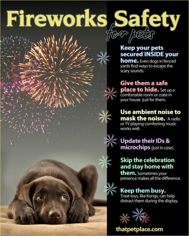 FireworksSafetyTipsforPets_53b422b962e40_w1500.jpg