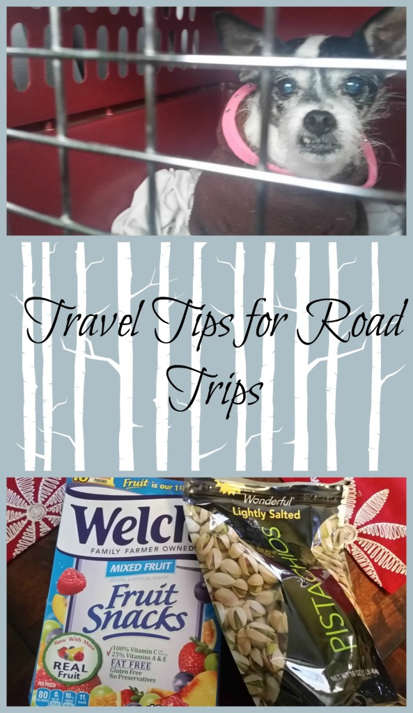 traveltipsforroadtrips
